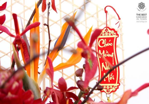 Những loài hoa Lan chơi tết cực sang chảnh!- Hoa 7 Ngày - xinhtuoi.online