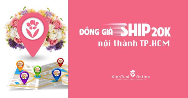 SĂN DEAL CỰC HOT CÙNG #XINHTUOIONLINE  - xinhtuoi.online