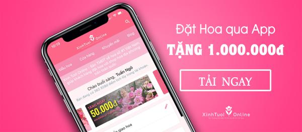 Đặt hoa qua App Xinh Tươi Online - Nhận ngay 1 triệu đồng vào tài khoản tích lũy