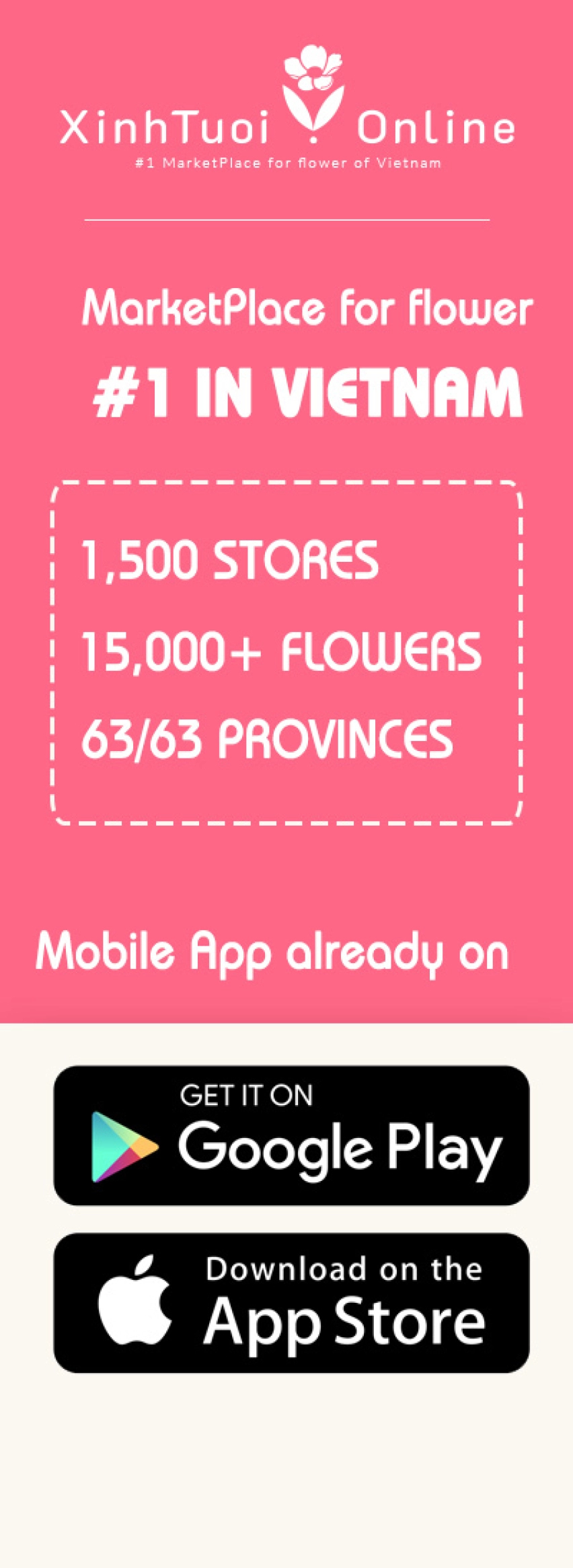 Xinh Tuoi Online - #1 MarketPlace for flower of Vietnam