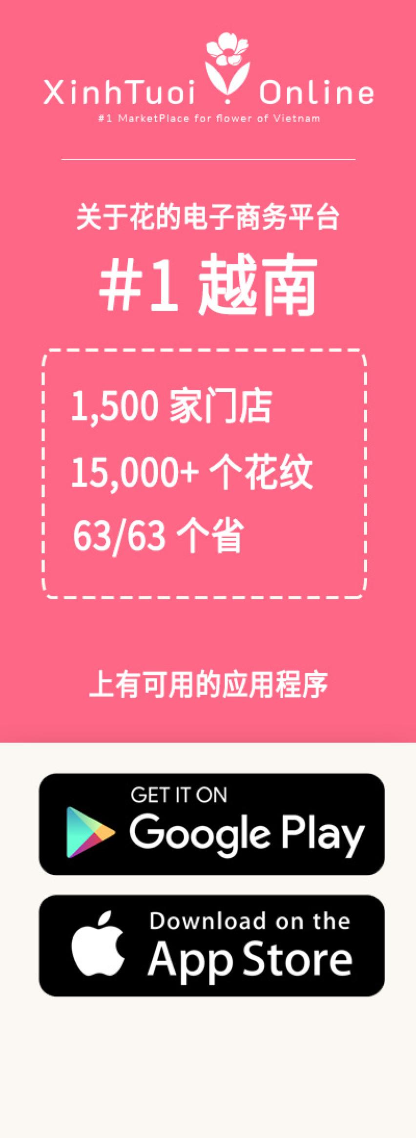 Xinh Tuoi Online-关于越南#1花卉的电子商务平台