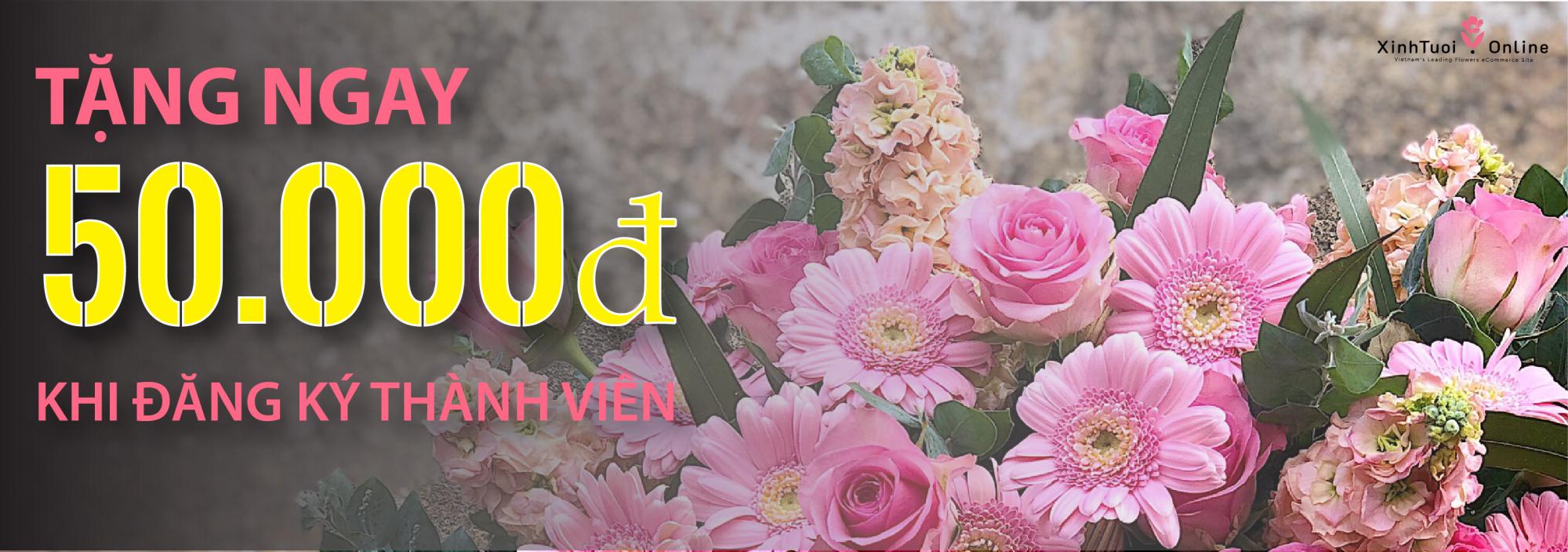 Đăng ký Xinh Tươi Online, nhận ngay 50.000đ - xinhtuoi.online