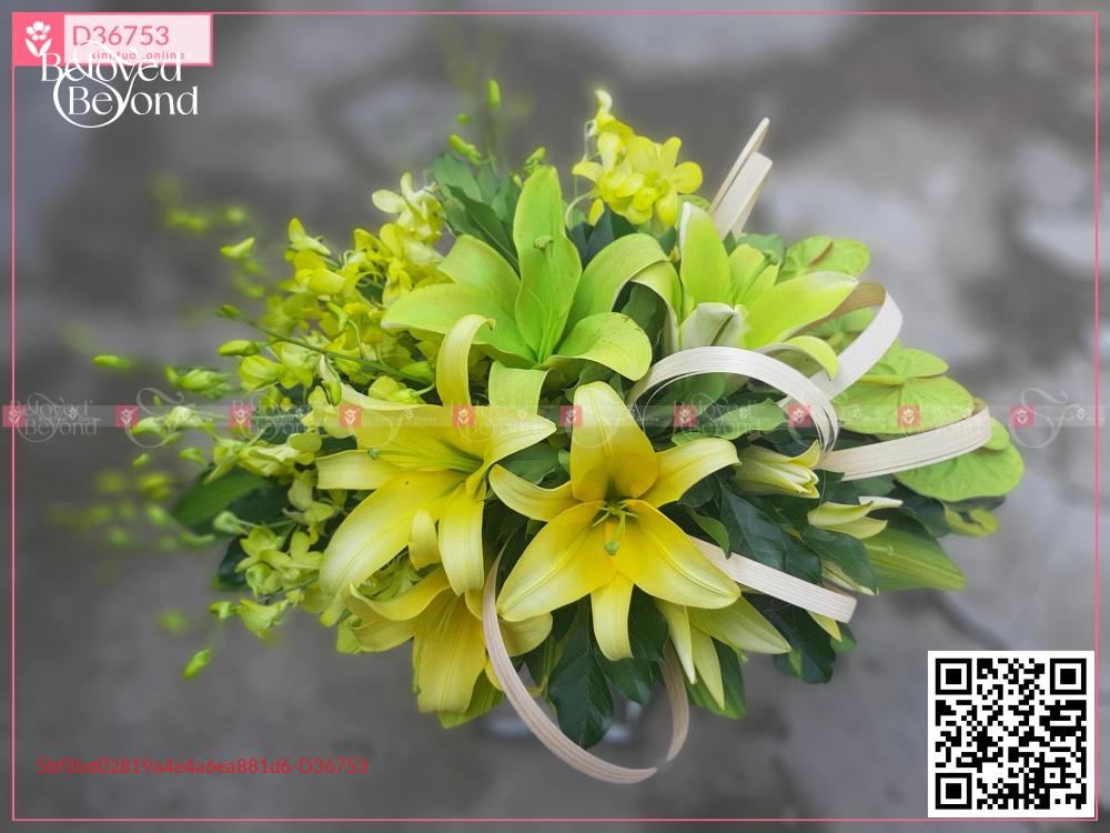 Trọng đại - D36753 - xinhtuoi.online