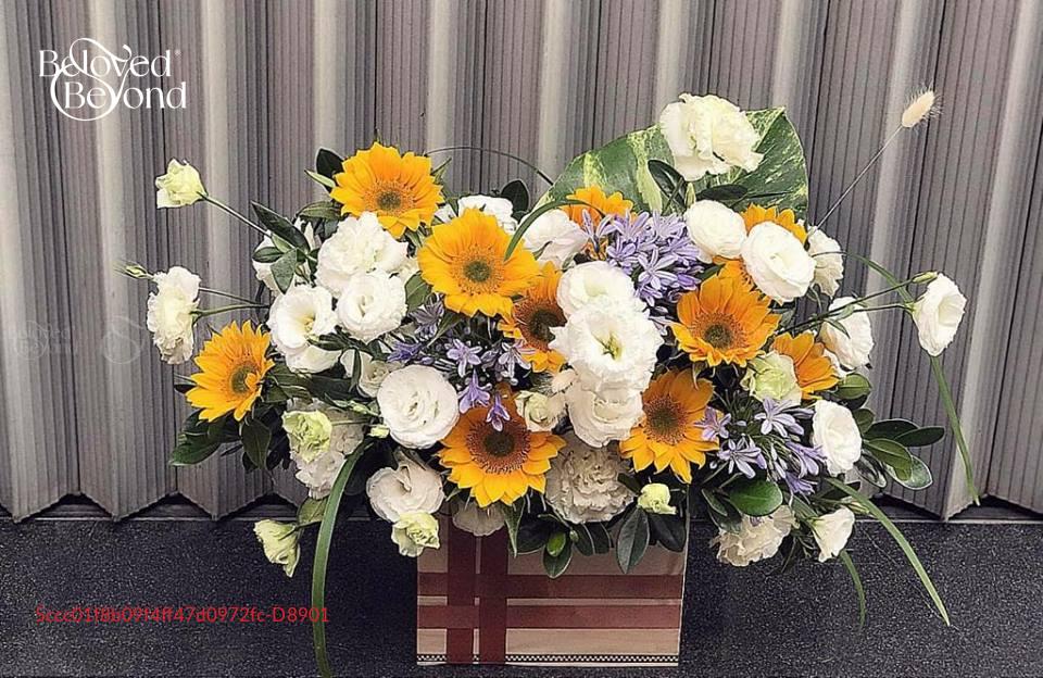 Hộp Hoa Sinh Nhật - xinhtuoi.online