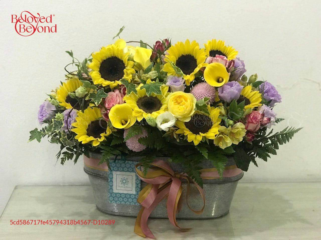 Hạnh phúc - D10289 - xinhtuoi.online