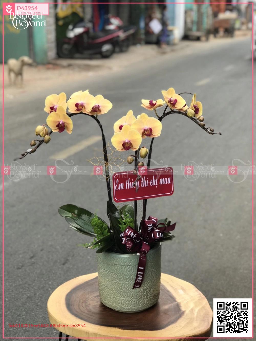 Xuân như ý - D63954 - xinhtuoi.online