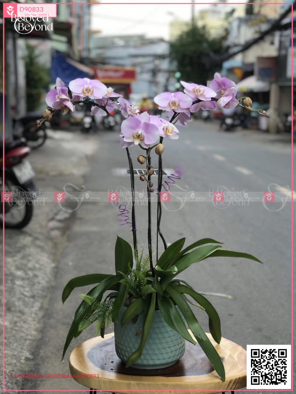 Vĩnh Cửu - D90833 - xinhtuoi.online