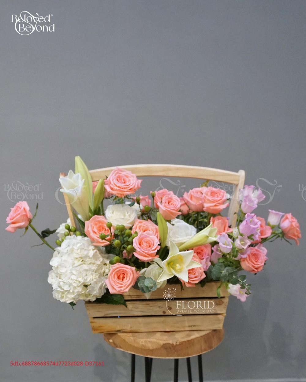 Bó 0204 - D37161 - xinhtuoi.online