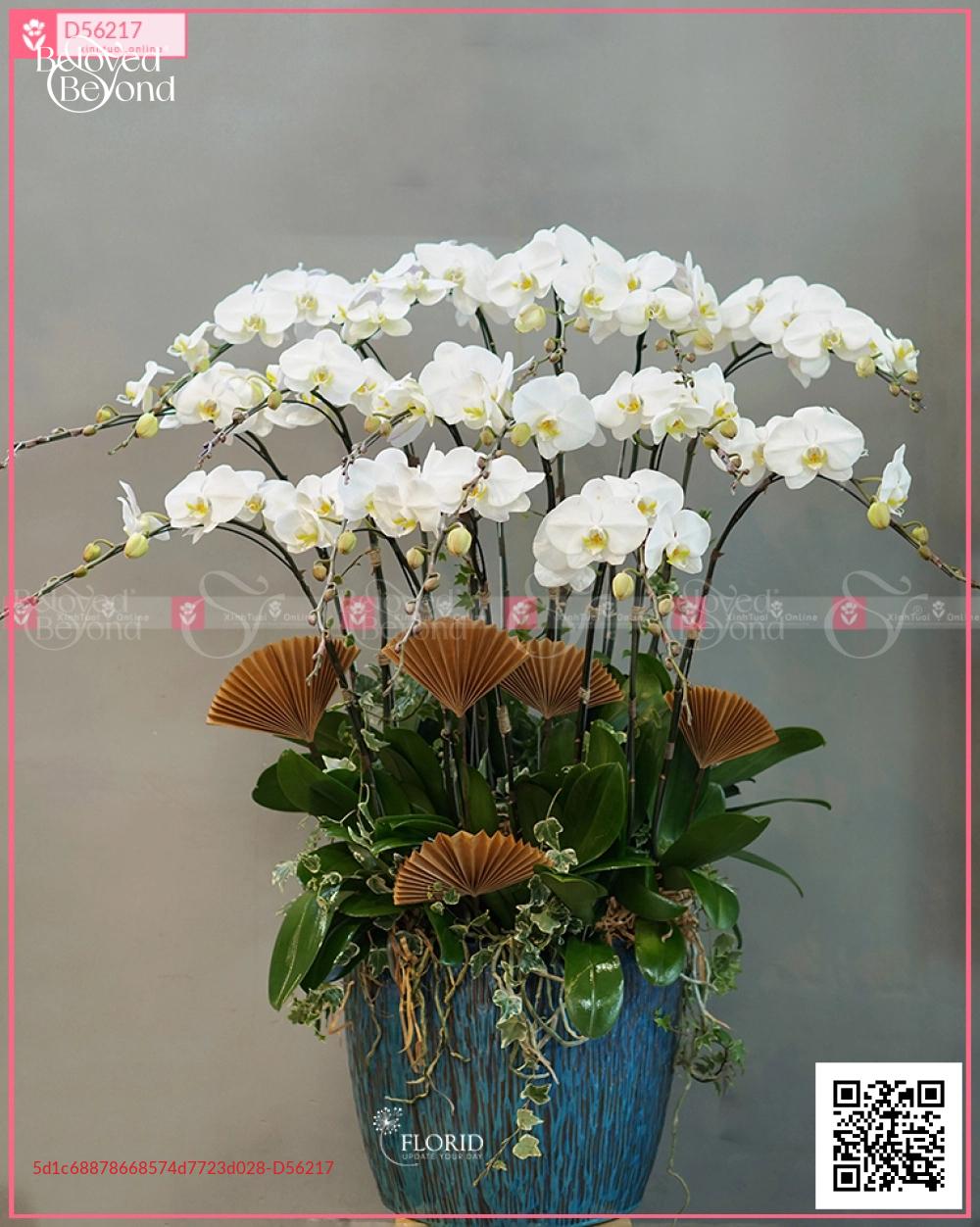 mã sp 1393 - D56217 - xinhtuoi.online