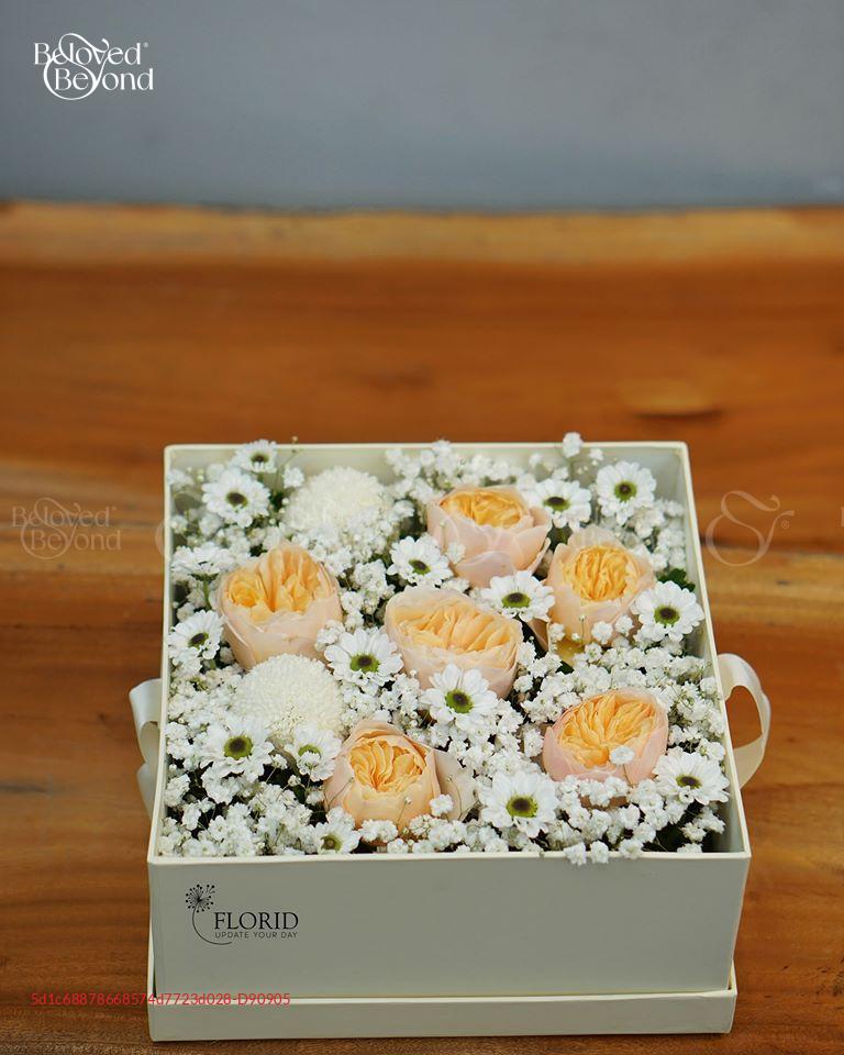 MS 1308 valentine - D90905 - xinhtuoi.online