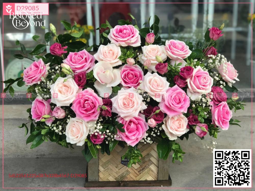 Bình an - D29085 - xinhtuoi.online