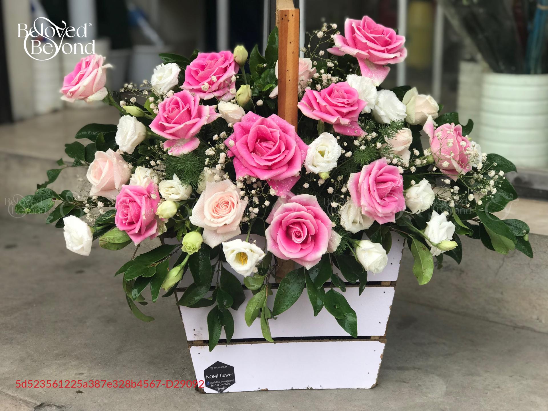 Yên bình - D29092 - xinhtuoi.online
