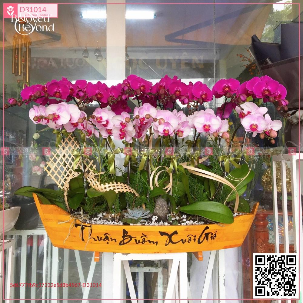 Thuyền Lan Hồ Điệp lớn - D31014 - xinhtuoi.online
