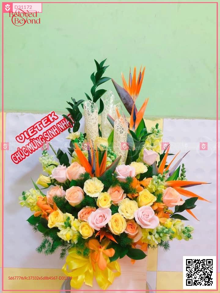 Đông sang - D31172 - xinhtuoi.online