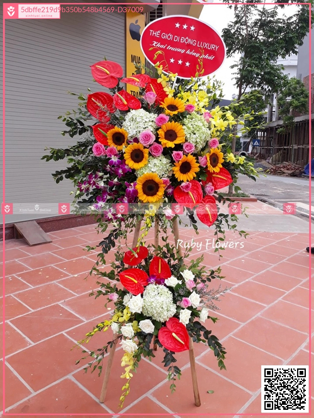 Xinh xắn - D37009 - xinhtuoi.online
