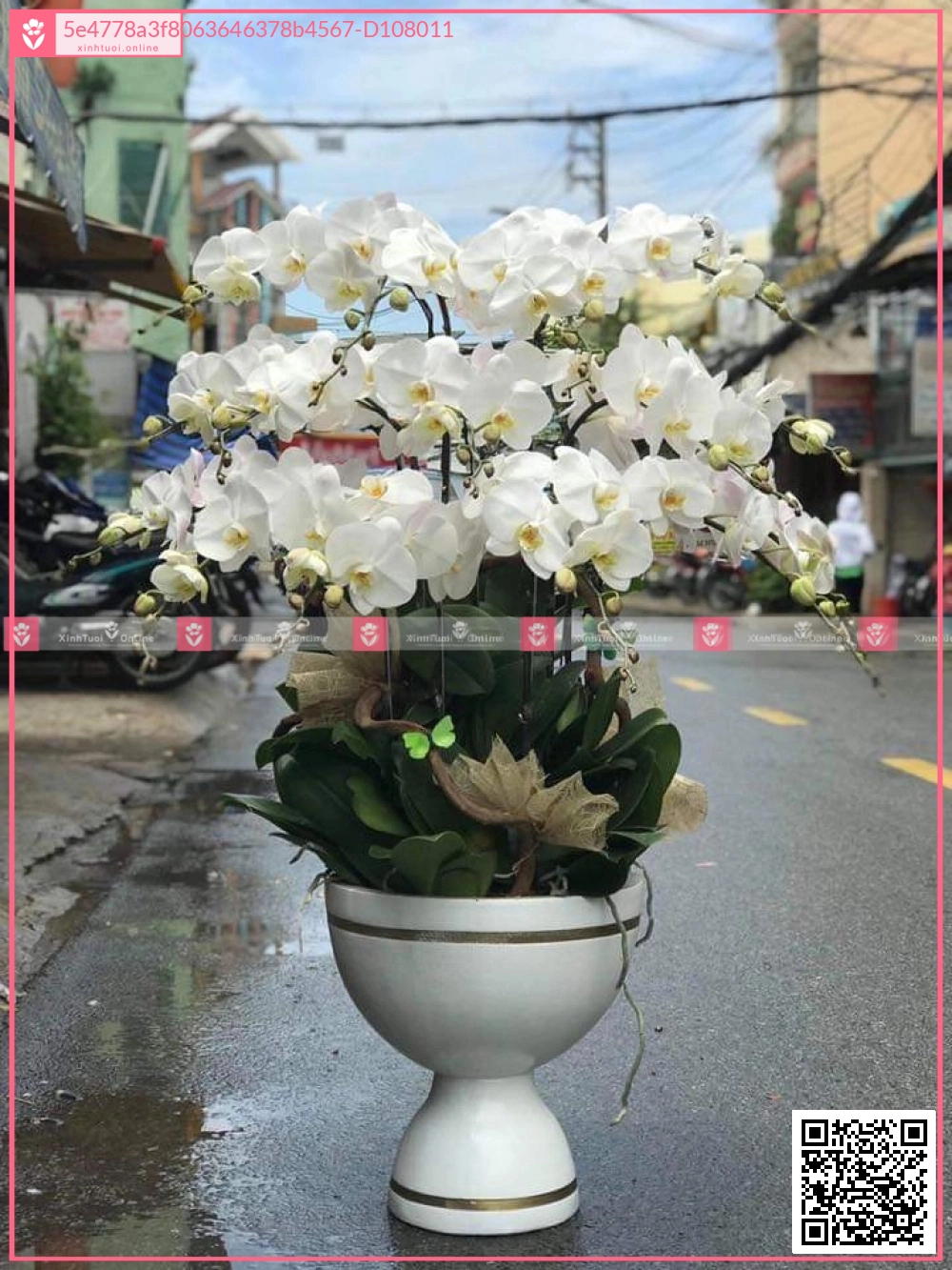 Mùa yêu - D108011 - xinhtuoi.online
