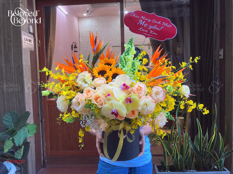 Thành Công - D578077 - xinhtuoi.online