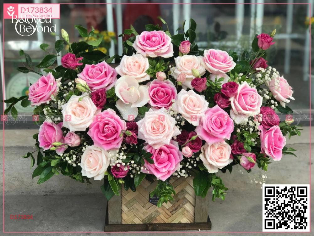 Bình an - D173834 - xinhtuoi.online