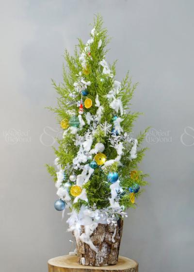 Santa claus - xinhtuoi.online