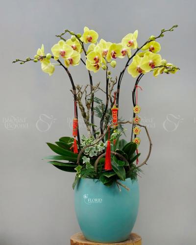 Xuân Sang - xinhtuoi.online