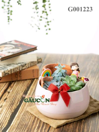 Sen Đá tô tiểu cảnh - D583566 - xinhtuoi.online