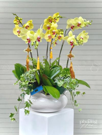 Khai xuân - D580145 - xinhtuoi.online