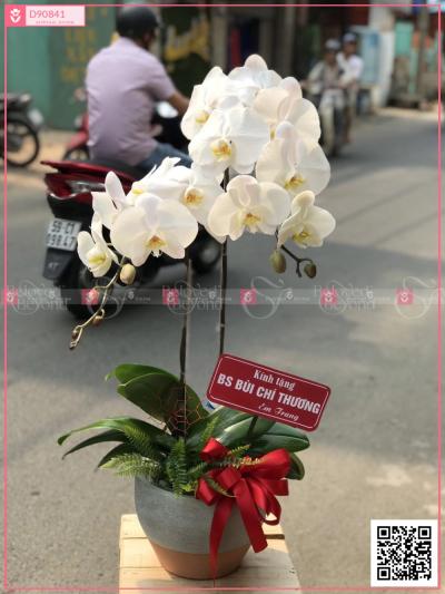 Phú ý - D90841 - xinhtuoi.online