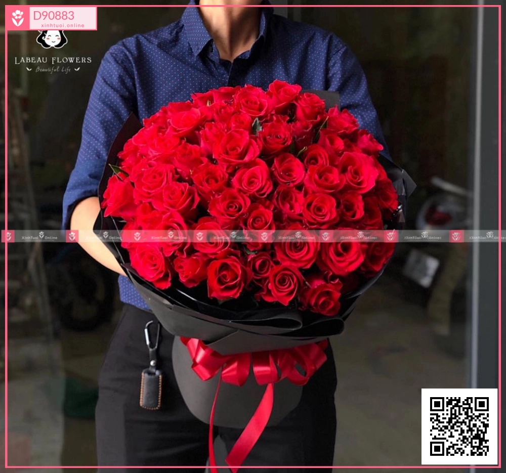Only Love - xinhtuoi.online